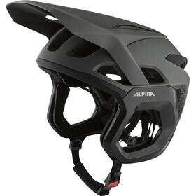 Alpina Rootage Evo Helmet, gris